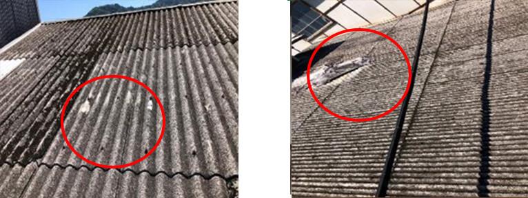 スレート屋根の被害